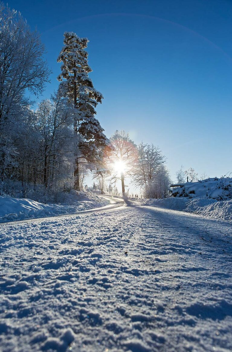 Uddetorp Säteri - Vinterland